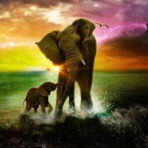 diamond painting olifant met kalf