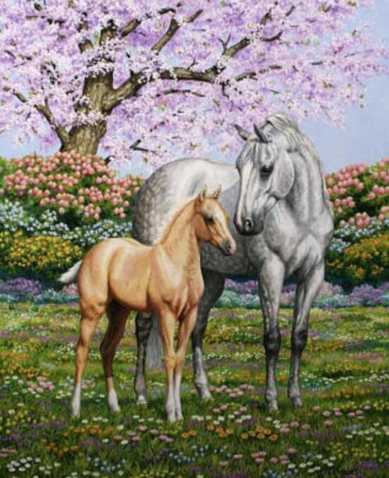 diamond painting paard met veulen