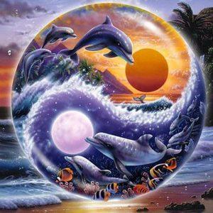 Diamond painting dolfijn Yin Yang