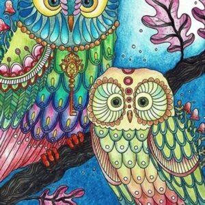 Kleurrijike uilen