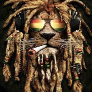 Leeuw Afro