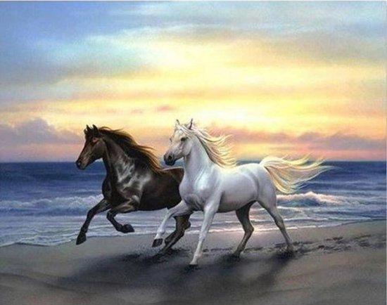 Paarden in zee