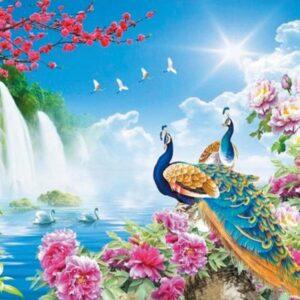 Pauw met waterval