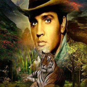 Diamond painting Elvis Presley the king