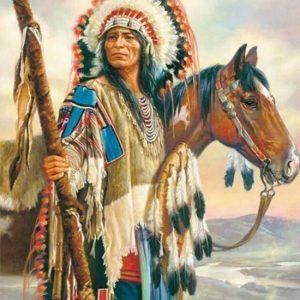 Diamond painting indiaan